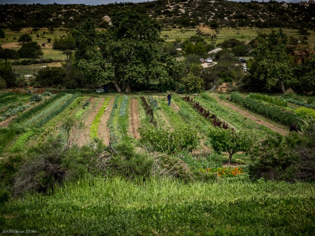 The Organic Farm at El Mogor