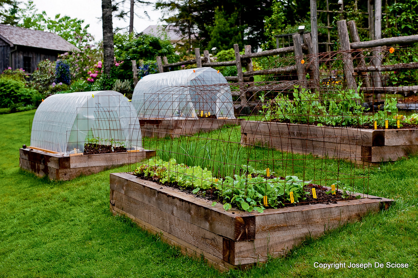 How To Grow Vegetables All Year Long Even In Winter!