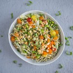Summer Noodle Bowl with Thai Basil Pesto | A refreshing vegan summer noodle bowl with thai basil pesto and crunchy seasonal vegetables. An easy lunch or dinner that's easily gluten free. | SeasonedVegetable.com #vegan #vegetarian