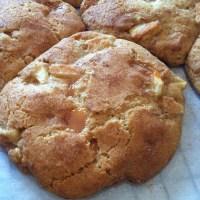 Caramel Appledoodles