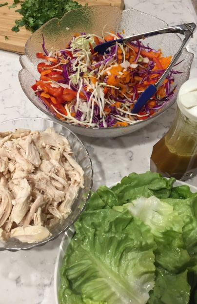 Chicken Cabbage Bowls with Asian Dressing