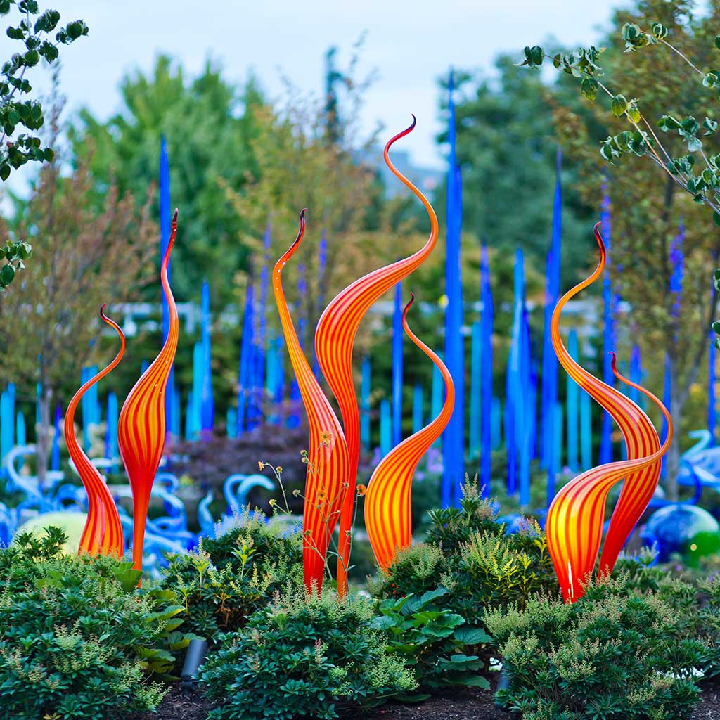 Image Result For Chihuly Garden And Gl