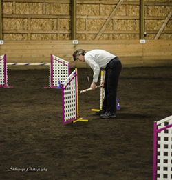 Sometimes the agility judge is responsible for setting the bars for correct height.