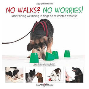 No Walks No Worries