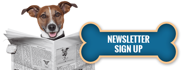 Seattle DogSpot Newsletter Sign up