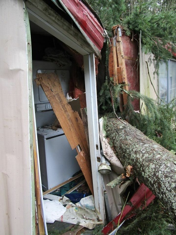 More damage at Rescue Every Dog's facility in Kingston, WA caused by Thursday night's windstorm. Photo from Rescue Every Dog.