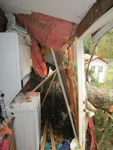 More damage at Rescue Every Dog's facility in Kingston, WA caused by Thursday night's windstorm.