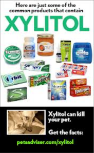 Xylitol can be deadly to dogs.