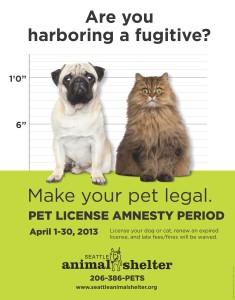 seattle dog license