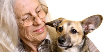 Pets and Estate Planning: With or without you, your dog is a lifetime commitment