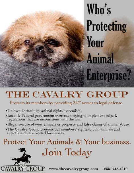 Fairview Pet Center told me to send all inquiries about Blanche's death to the Cavalry Group, a Missouri based organization that lobbies on behalf of dog breeders and puppy mills. Image from the Cavalry Group.