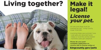 King County Shelter Going Door to Door to Educate People About Pet Licensing