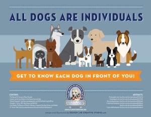 Connection as a Springboard for Dog Behavior