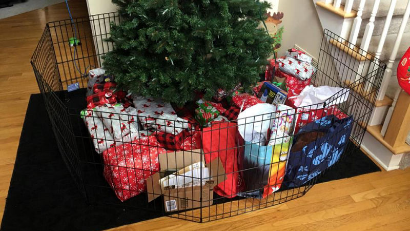 Folding play pens are a simple way to dog-proof your Christmas tree.