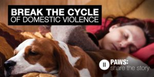 Washington Domestic Violence Shelters That Allow Dogs