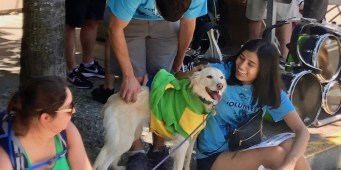 Seattle Area Weekend Dog Events: Friday, June 22 – Sunday, June 24