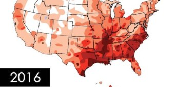 Map of US Heartworm Cases