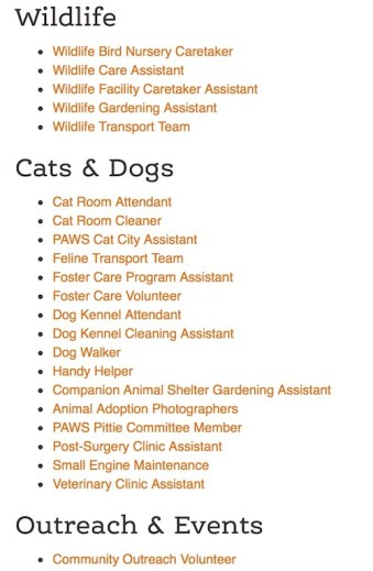12 Ways You Can Help Local Animal Shelters and Rescue Groups