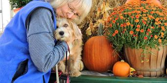 Seattle Area Weekend Dog Events: Friday, October 12 – Sunday, October 14