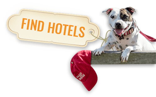 find dog friendly hotels in and around Seattle.