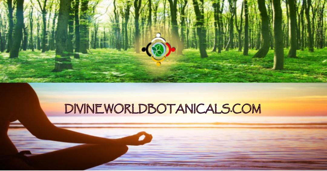 Purchase Kratom Purchase Kava at Divine World Botanicals