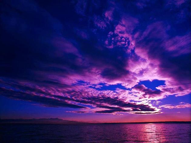 wild insomnia sky