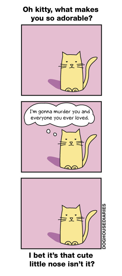 oh kitty