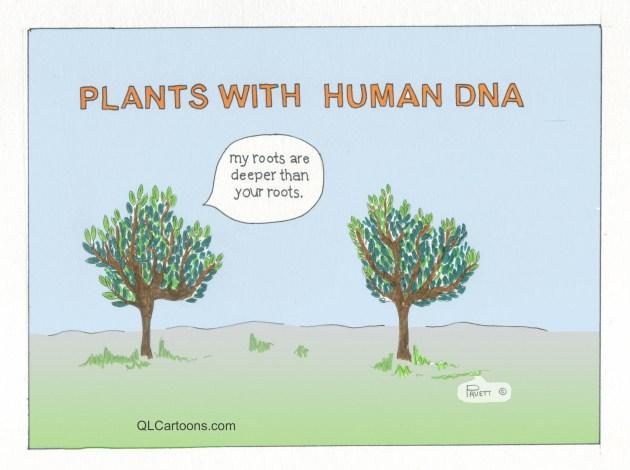 PlantswHumanDNA