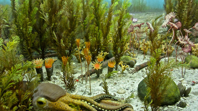 Ordovician diorama. Image credit: ellenm1. Licensed CC-BY-NC.