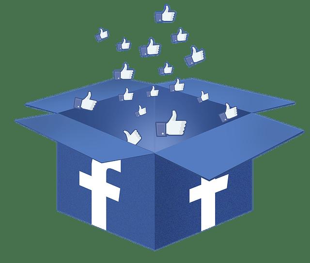 facebook-box-1334045