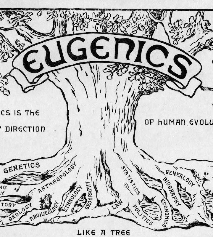 White Supremacy: The Dark Side of Eugenics