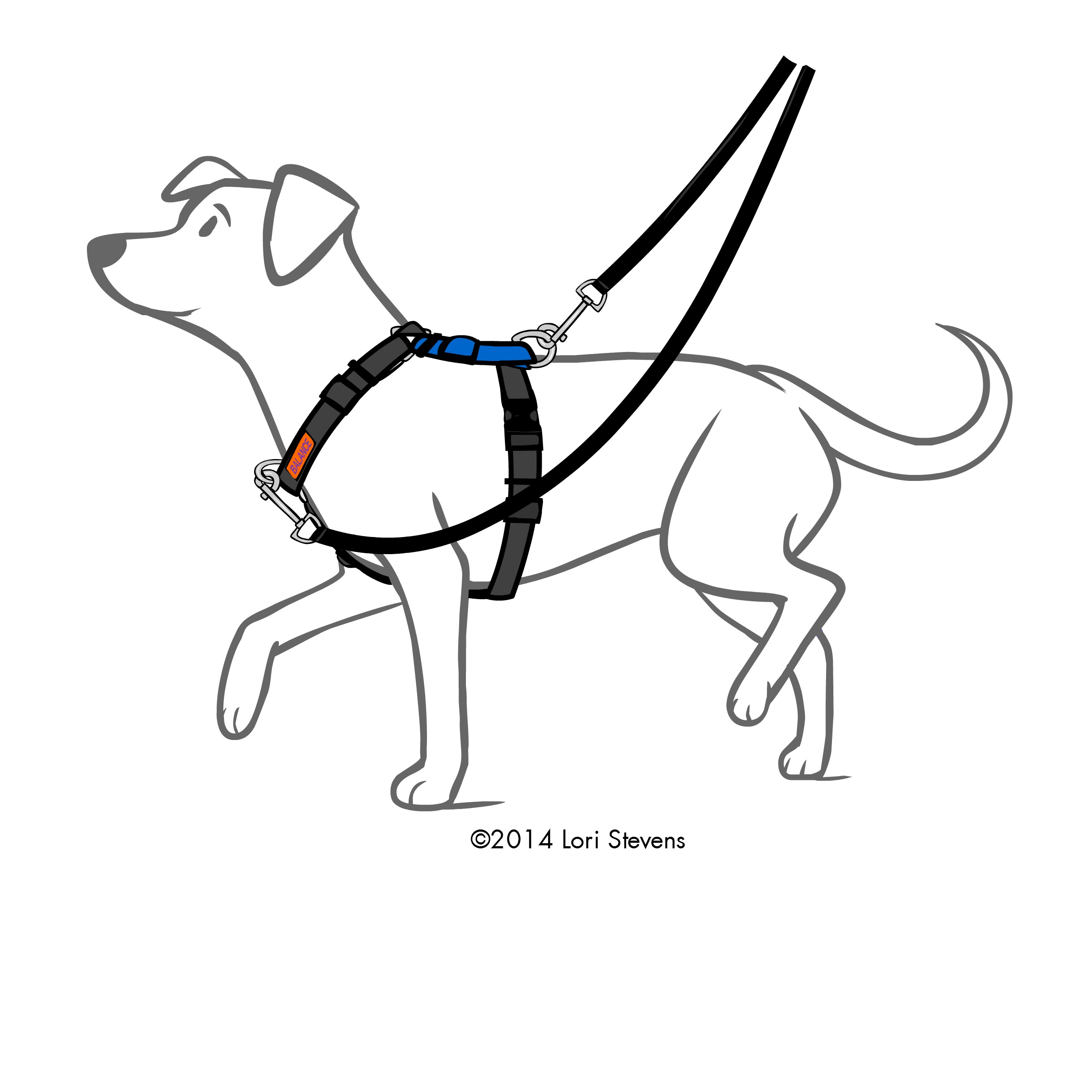 Service Dog Harnesses For Large Dogs