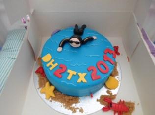 DH2TX2013 verjaardagstaart