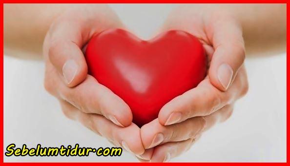 Permalink to 7 Nama Penyakit Yang Berhubungan Dengan Darah Dan Jantung