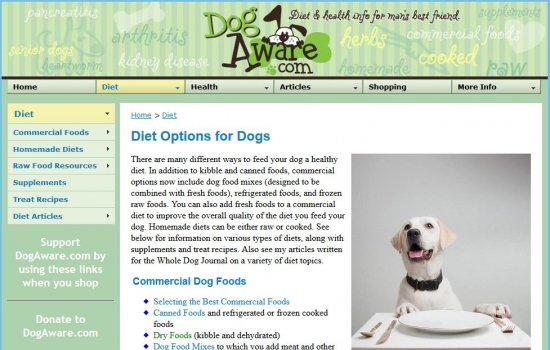Dog Aware: Diet Options for Dogs