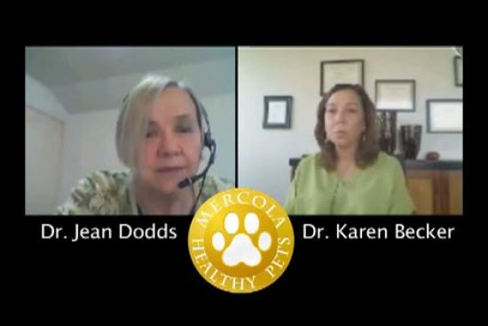 Dr. Dodds: Hidden Signs of Hypothyroidism Part 2
