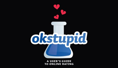 OK Stupid: A User's Guide to Online Dating
