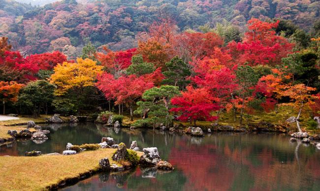 Sogenchi Garden at Tenryu-ji Temple, Arashiyama, Kyoto in November