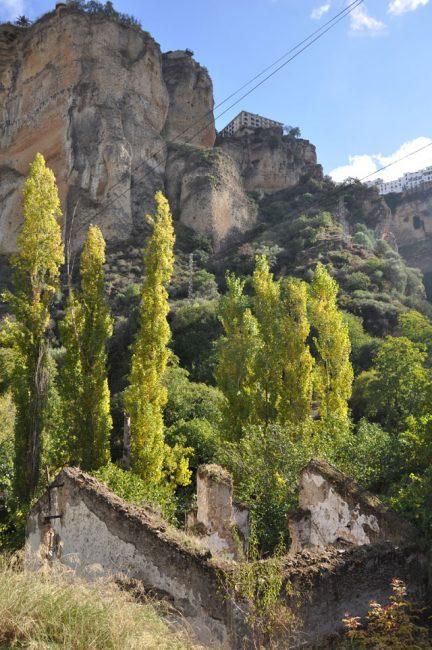 Camino de los Molinos hike, Ronda