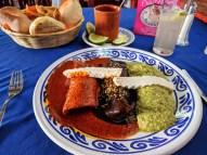 Mole sampler, Puebla