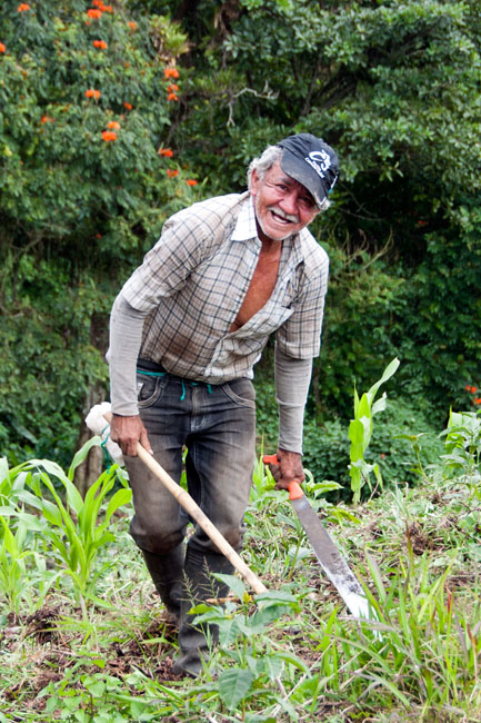 Arriero (itinerant farmworker) clearing the fields at Hacienda Guayabal. The arrieros live at the hacienda while there is work for them to do, then they move on to the next place.