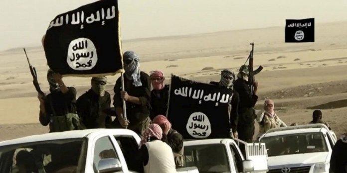 Daesh Isis