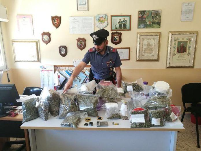 La droga sequestrata a Cirò Marina