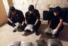 carabinieri crotone marijuana