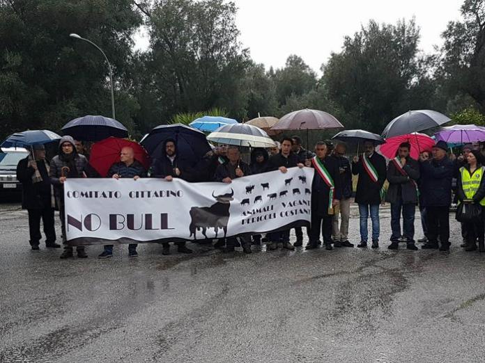 Protesta a Cittanova contro vacche sacre della 'ndrangheta