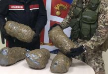 marijuana rizziconi arrestato Francesco Scibilia