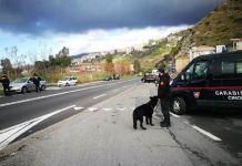 Carabinieri Paola Cetraro