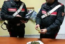 carabinieri rende marijuana
