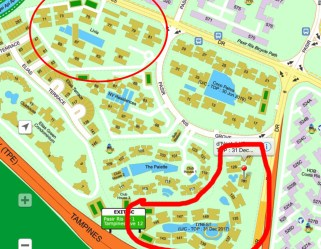 The Curious Case of Two Pasir Ris Condos – Why 1 Condo Lost $300K While Another Makes $100K