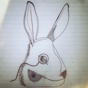 rabbit-illustration